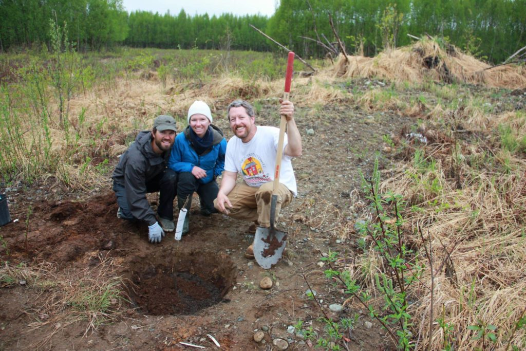 Bare Hands Farm started out leasing a remote property outside of Talkeetna, Alaska before becoming The Grove - a cold climate permaculture alaska farm in Talkeetna
